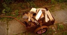 Das Feuerholz für die Feuerschale liegt bereit - Die-ideale-Feuerschale.de